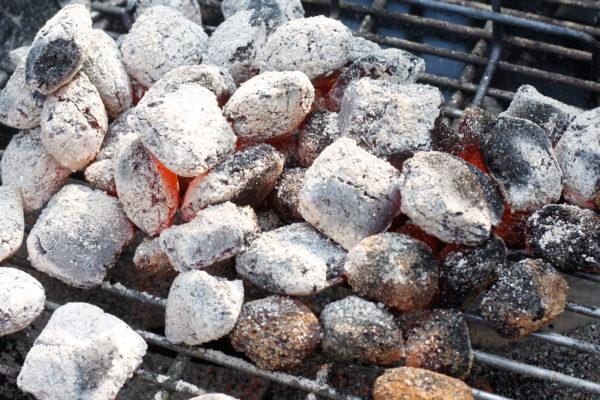 Affald fra grill